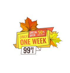 Special offer only week at thanksgiving holidays vector