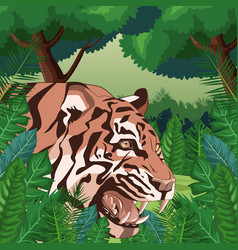 tiger in the jungle vector image