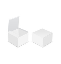 two blank square boxes - open and closed mock up vector image