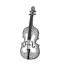violin vintage black engraving vector image