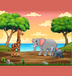 wild animals walking on riverside vector image