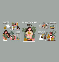 Care for plants infographics vector