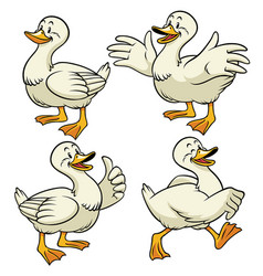 duck with cartoon style in set vector image