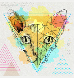 hipster animal realistic and polygonal sphynx cat vector image