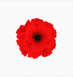 Isolated red poppy icon vector