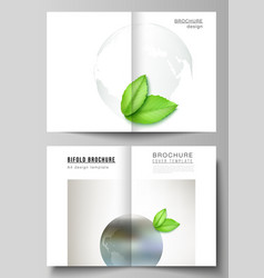 layout two a4 format cover mockups vector image