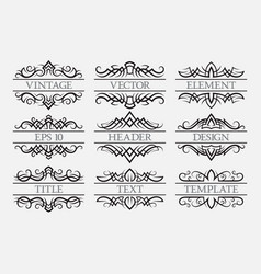 vintage elements with a header field set of vector image