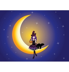 Witch on the Moon vector image