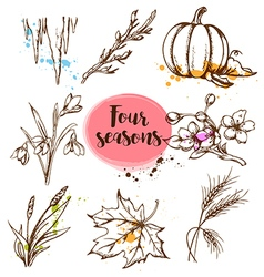 Set of hand drawn nature design elements vector image vector image