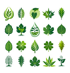 abstract leaf icon set vector image