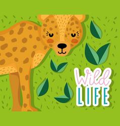 cute jaguar wildlife animal cartoon vector image