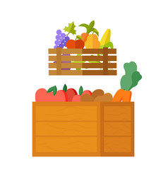 harvested fruits and vegetables veggies in boxes vector image