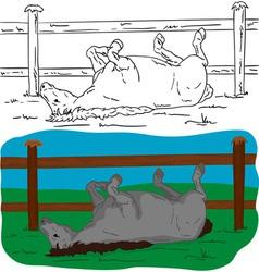 Horse lying vector