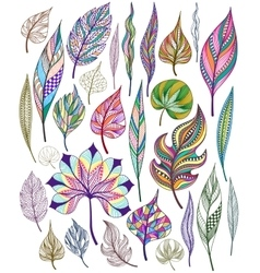set colorful abstract leaves vector image