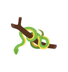 Snake isometric vector