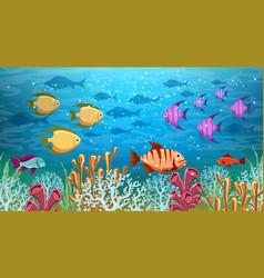 underwater life panorama vector image