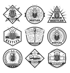 vintage monochrome beetles premium labels set vector image