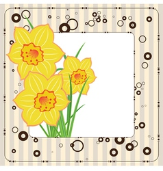 bouquet daffodils greeting card vector image