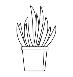 cacti pot icon outline style vector image