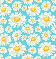 Chamomile field seamless pattern vector