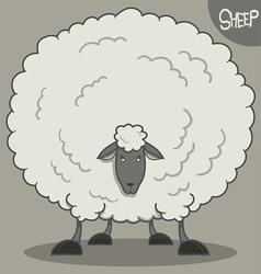 Fluffy white sheep vector