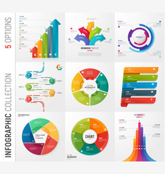 Infographic collection of 5 options vector