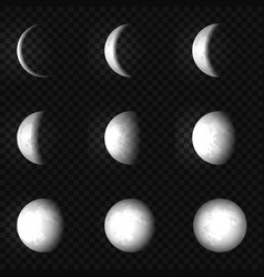 moon phase set vector image