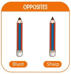 Opposite words with blunt and sharp vector