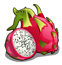 Set of whole and half of ripe pitahaya fruit or vector