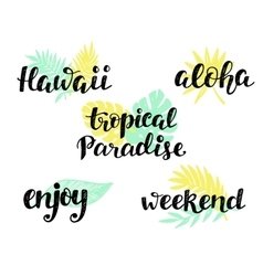 Summer lettering phrases vector