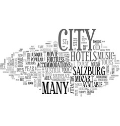 a guide to salzburg austria text word cloud vector image