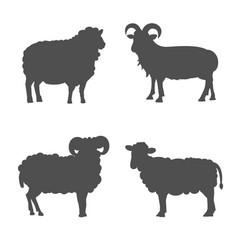 set cute sheep and ram isolated retro vector image vector image