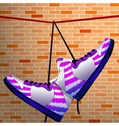 hanging shoes vector image vector image