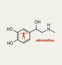 Formula hormone adrenaline vector