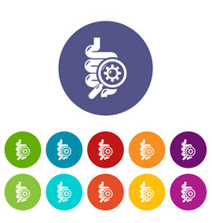 Intestine virus icons set color vector