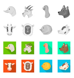 isolated object of agriculture and breeding icon vector image