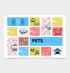 pets infographic template vector image