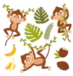 Set of isolated monkey with plants and fruits vector