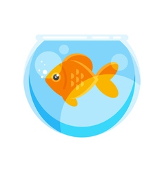 flat style of goldfish vector image vector image