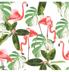 colorful floral pattern with flamingo and exotic vector image