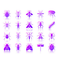 Danger insect simple gradient icons set vector