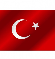 flag of Turkey vector image