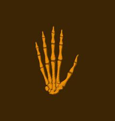 Flat shading style icon wrist bone vector