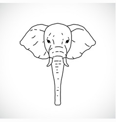 hand draw elephant head vector image