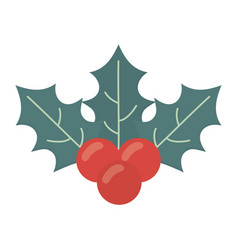 holly berry decoration celebration merry christmas vector image