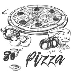italian pizza collection of pizza with vector image