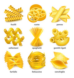 Pasta types icons set vector image