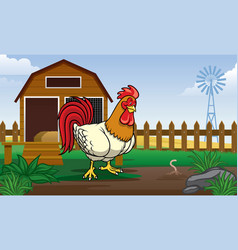 rooster in the farm yard with cartoon style vector image