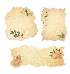 Vintage paper pieces with floral vector