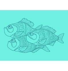Piranha color drawing vector